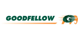 logo_goodfellow[1]